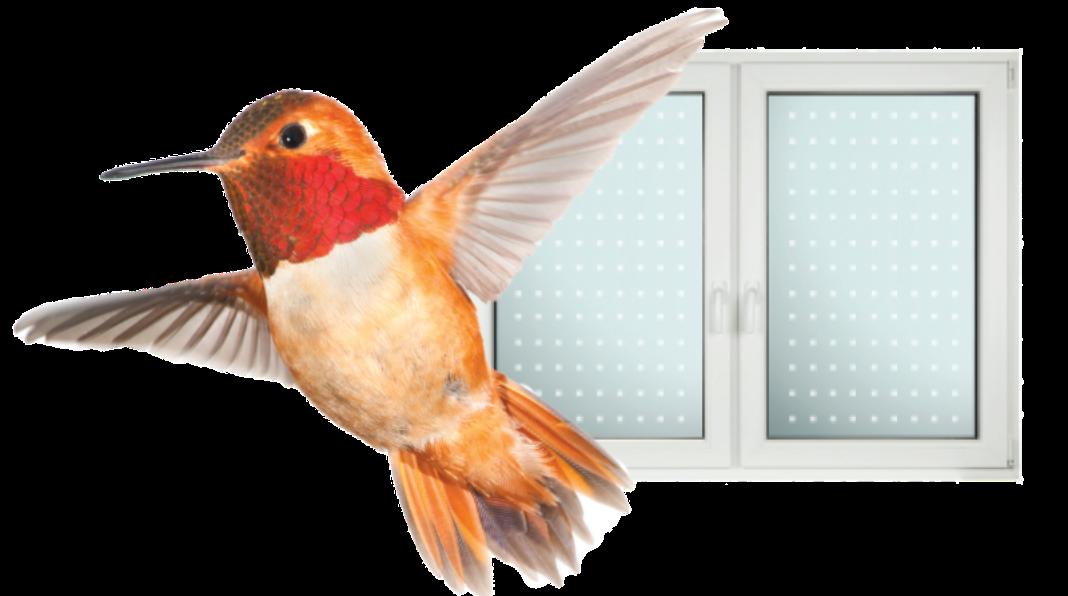 BirdWindow@2x