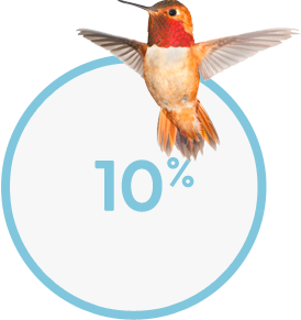 10-percent-of-birds