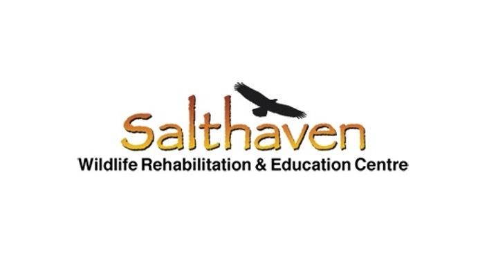 Ambassador Feature: Salthaven Wildlife Rehabilitation & Education Centre